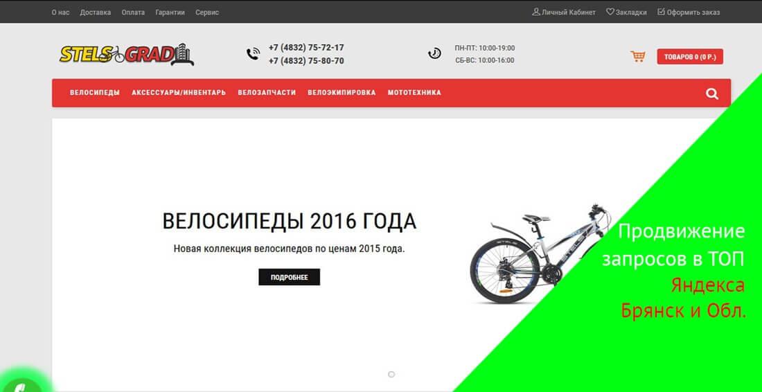 продвижение запросов в топ 10 по Брянску